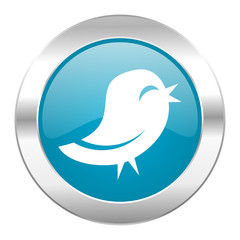 twitter internet icon