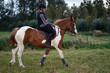 passion équitation