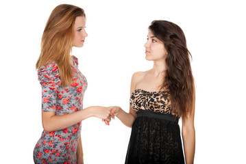 Beautiful slender girlfriends shake hands