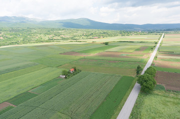 aerial view of cultivated fields and rural road