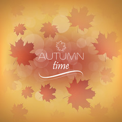 Autumn vector background with leaves
