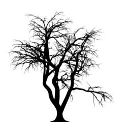 Halloween Baum Hintergrund gruselig