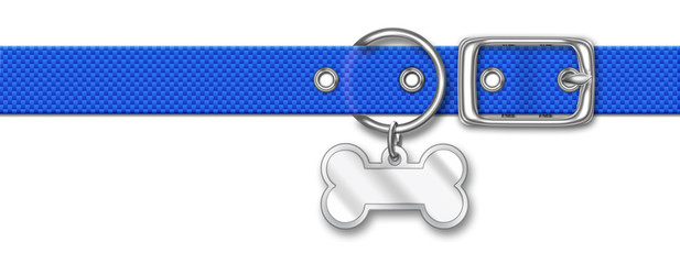 Blue Nylon Animal Collar With Tag