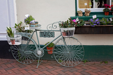 Flower on bicycle - basket with flowers, decorative beautiful re