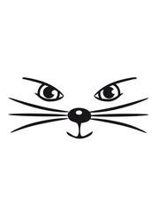 Katze süss niedlich girl