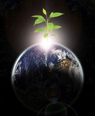 New Ecologic era rising-Elements of this image furnished by NASA