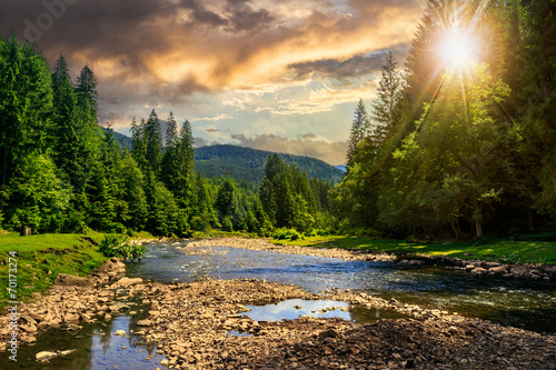 forest river with stones in mountains at sunset - 70173274