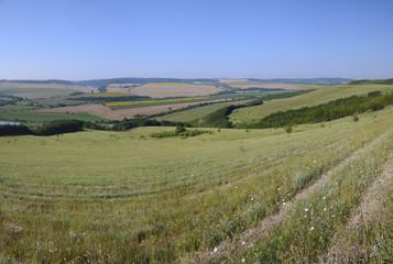 Green fields - Beautiful village landscape in northern Bulgaria