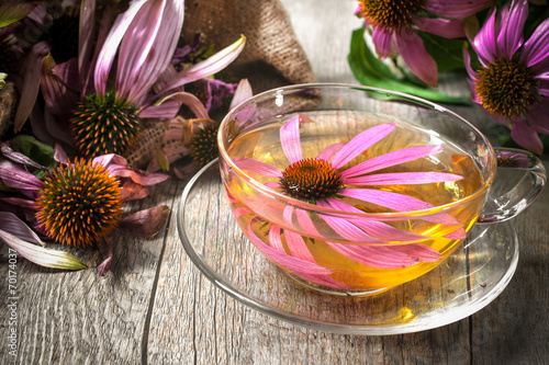 Herbal Tea. Echinacea purpurea - 70174037