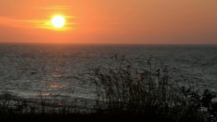 Abendliche Sonne am Meer
