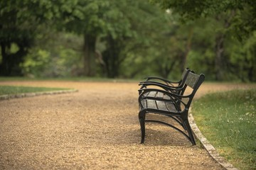 Stylish bench in autumn park