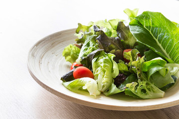 vegetable salad in wooden bowl , healthy food