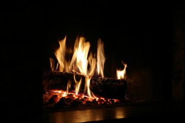 brennender Holzscheit im Kamin
