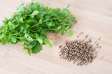 Coriander Leaves And Seeds - Cilantro - Fresh coriander leaves a