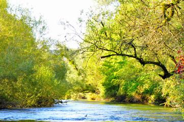 La Loue en automne (Jura)