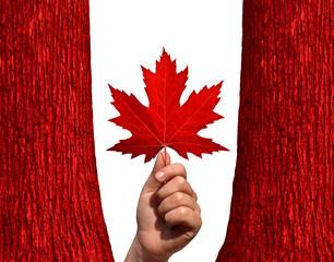 Canadian Autumn