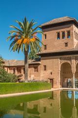 Garden in Alhambra Spain