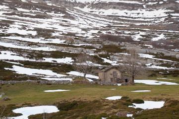 Little rural house in the snowy fields