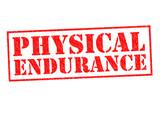 PHYSICAL ENDURANCE poster