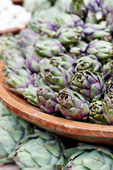 Fresh artichokes harvest