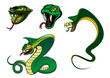 Cartoon angry snake characters