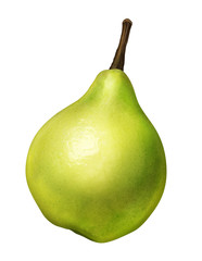 green pear of illustration on white background