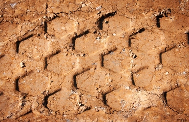 wheel's trail tread in the red mud as a background