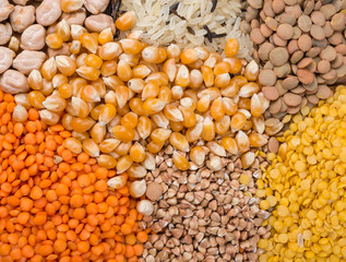 Assorted grains of rice, corns, lentils, buckwheat.