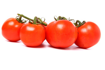 Group of fresh tomatoes in row, isolated on white background.