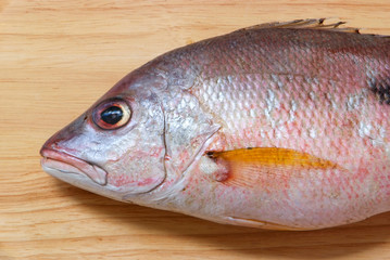 Red snapper fish on Wooden