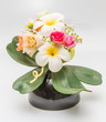 Fake flower, Colorful decoration artificial flower with plumeria