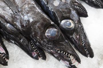 Degenfisch oder Espada auf einem Markt