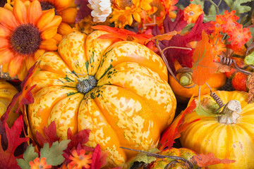 Closeup of a colorful autumn display with a squash fruit