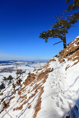 Wanderwege im Winter