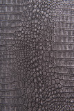 Fototapety Crocodile skin leather, gray, silver background