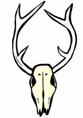 doodle deer skull
