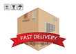 Fast delivery, vector box