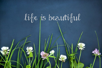 motivational quote LIFE IS BEAUTIFUL on black background flowers