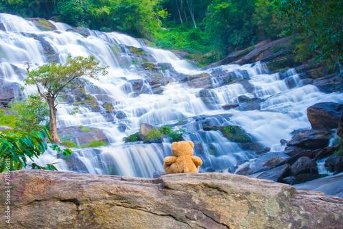 Foto op Plexiglas Bos rivier Brown bear sitting at the waterfall