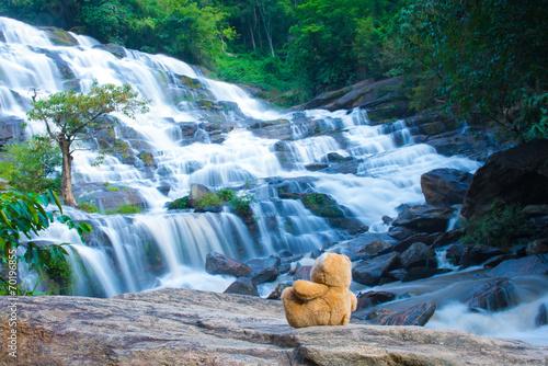 Staande foto Bos rivier Brown bear sitting at the waterfall