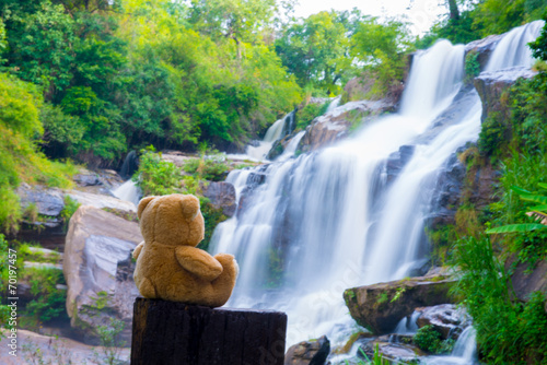 Aluminium Bos rivier Brown bear sitting at the waterfall