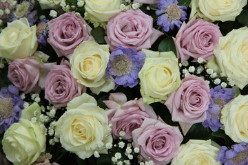 Purple and white wedding roses