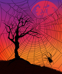 halloween background with tree and spider web