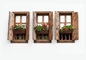 Three windows with flower pot on white wall