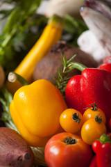 野菜 赤 黄
