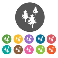 Pine trees icons. Camping hiking set. Round colourful 12 buttons