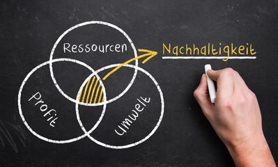 Nachhaltigkeit: Schnittmenge aus Ressourcen, Umwelt und Profit