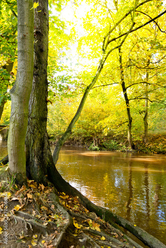 Leinwanddruck Bild autumn scenery