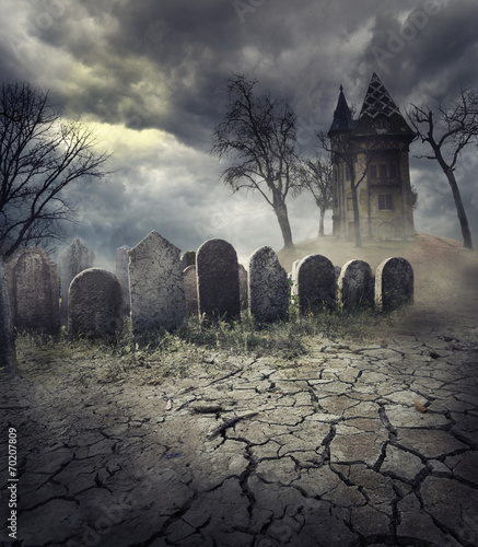 Tuinposter Historisch geb. Haunted House