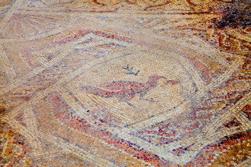 Fragmant of ancient Hellinistic mosaic